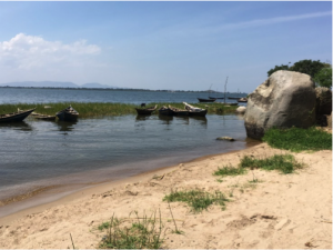 Small fish, big problems: Gender based violence in Lake Victoria's fisheries