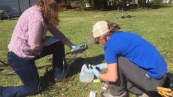 Updates from the ACRE-Duke Partnership: Water Samples in Lowndes County